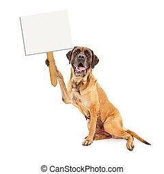 Funny Mastiff Dog Holding Blank Sign