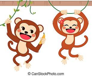 Funny Monkeys On Liana - Two cute funny monkeys on liana...