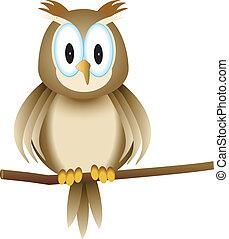 funny owl 2