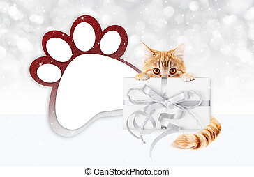 funny pet cat showing a gift box with silver ribbon bow and paw imprint shape isolated on blurred lights background blank template and copy space