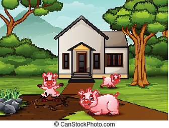 Funny pigs playing a mud puddle in front the house