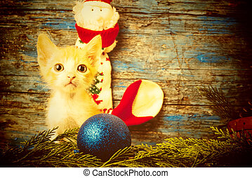 Funny playful cat, Christmas card
