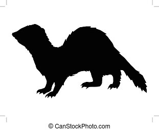 funny, playful ferret - black silhouette of ferret, side...