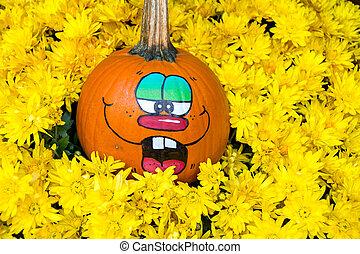 funny pumpkin in mums