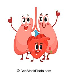 Funny, smiling human lungs and heart characters, chest internal organs
