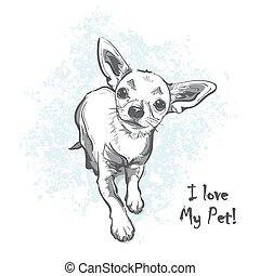 Funny puppy chihuahua. Contour cartoon vector illustration