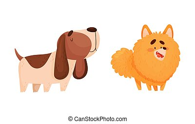 Funny Spaniel and Pomeranian Dog as Four-legged Friend and Domestic Pet Vector Set. Furry Playful Puppy as Home Animal with Friendly Snout Concept