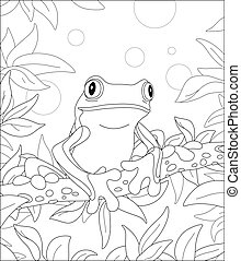 Funny tropical frog on a tree branch
