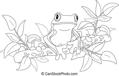 Funny tropical tree-frog on a branch