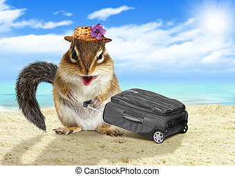 Funny vacationist, animal chipmunk with suitcase at beach