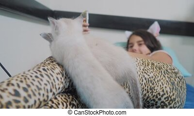 funny video two kittens playing on the little girl lying on...