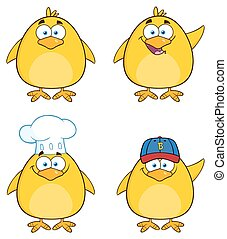 Funny Yellow Chick 1. Collection