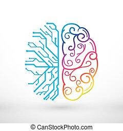 funzioni, creatività, analitico, cervello, vs, sinistra, destra, concetto, linee, astratto