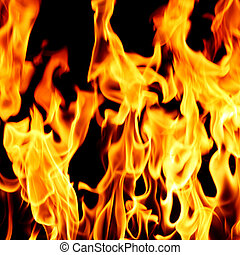 fuoco, chiudere, fiamma, su
