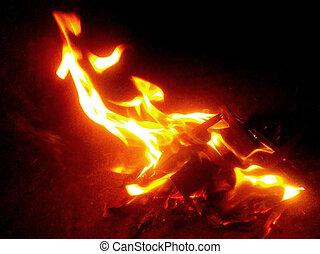 fuoco, closeup, fondo