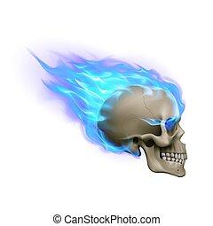 fuoco, cranio