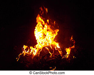 fuoco, fondo, natura