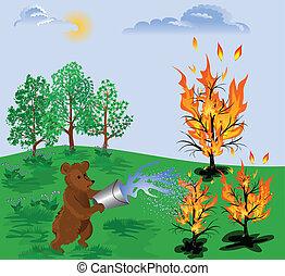fuoco foresta