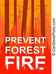 fuoco, impedire, foresta