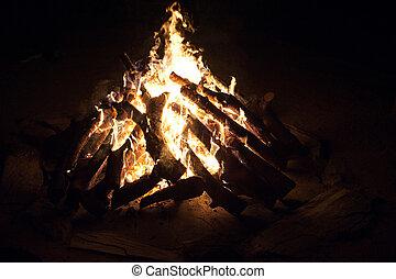 fuoco, ruggire, campeggiare