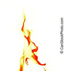 fuoco, singolo, fiamma, sfondo bianco
