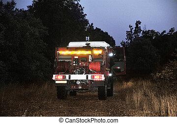 fuoco, strada, foresta, camion