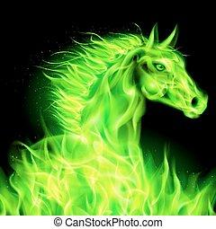 fuoco, verde, horse.