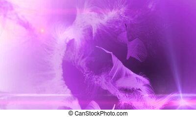 fur background pink