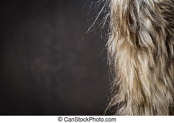 Fur Coat over Dark Background