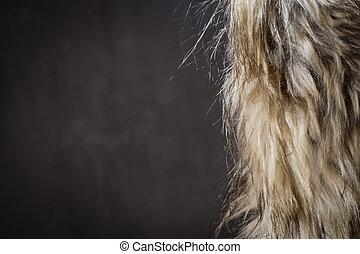 Fur Coat over Dark Background