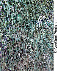 Fur texture - Detail of natural fur carpet