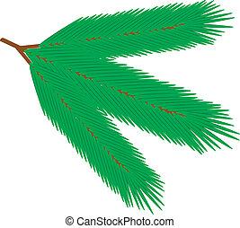Fur tree branch - vector illustration.