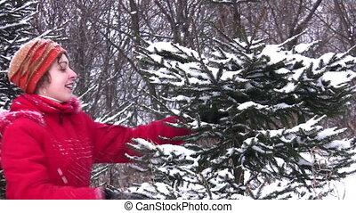 fur-tree, femme, neige