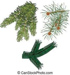 fur-tree, gałęzie