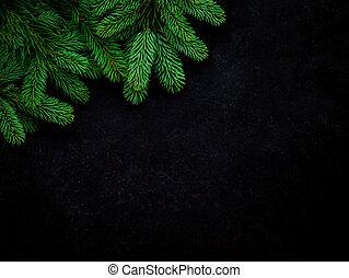 fura, synhåll, above., grenverk, svart, copyspace, julgran, bakgrund.