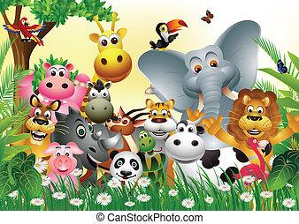 furcsa, állat, karikatúra
