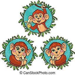 furcsa, övé, állhatatos, majom, kezezés., vektor, banán