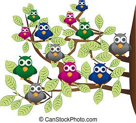 furcsa, falka, madarak, színes