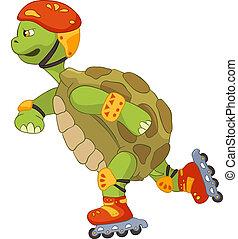 furcsa, turtle., roller.