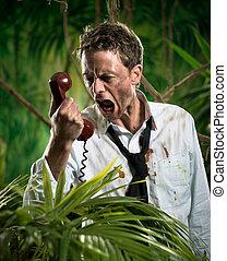 furioso, homem negócios, telefone, perdido, em, selva