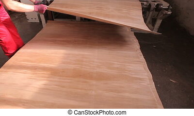 Furniture factory. Production of plywood. - Furniture...