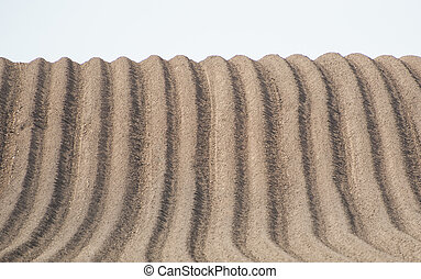 Furrows in ploughed field