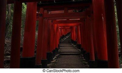 Fushimi Inari Taisha torii gates - Fushimi Inari Taisha...