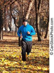 futás, erdő, ember