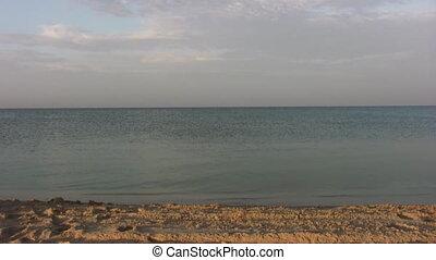 futás, nő, tengerpart