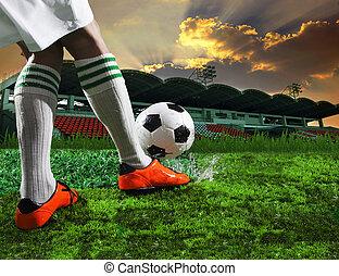 futball foci, alatt, sport, stadion