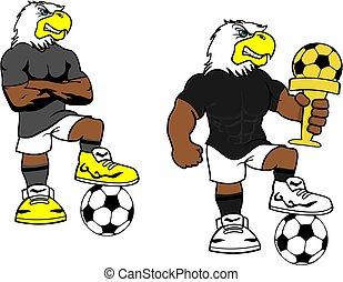 futball, futbol, erős, sas, karikatúra, állhatatos