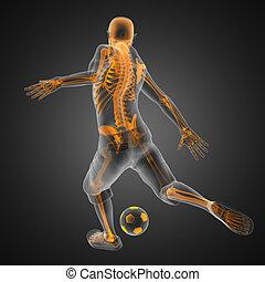 futball játék, játékos