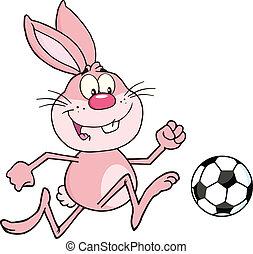 futball, rózsaszínű labda, üregi nyúl