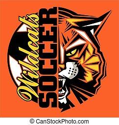 futbol, wildcats